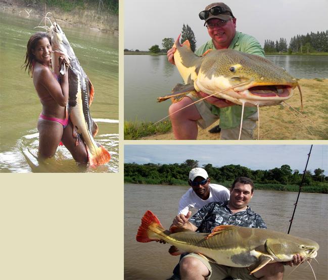 рыбалка на амазонке в хорошем качестве